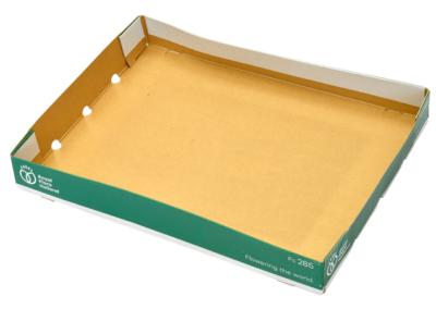 285: Beetpflanzenkarton 56x40x7